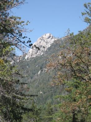 Idylwild views